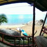 Ausblick aus dem Bungalow